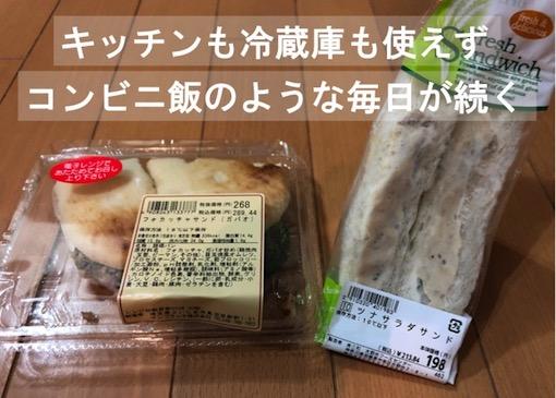 f:id:im_kurosuke:20201115054107j:plain