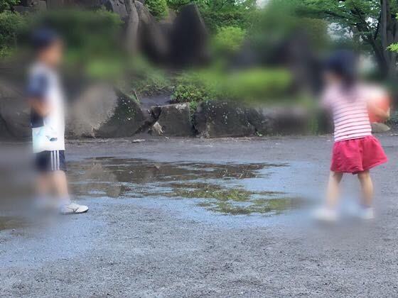 子どもが好きな水たまり