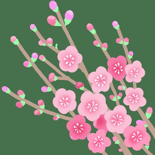 お花見は自粛します