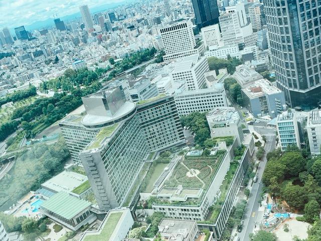 ザ・プリンスギャラリー紀尾井町から見下ろすホテルニューオータニ