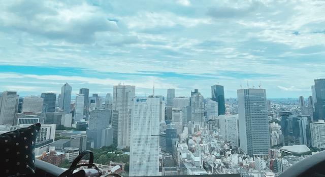 ザ・プリンスギャラリー東京紀尾井町のお部屋から見た景色
