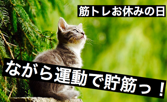 f:id:imaikiaruku:20171020193622j:plain