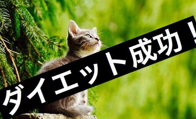f:id:imaikiaruku:20171020193740j:plain