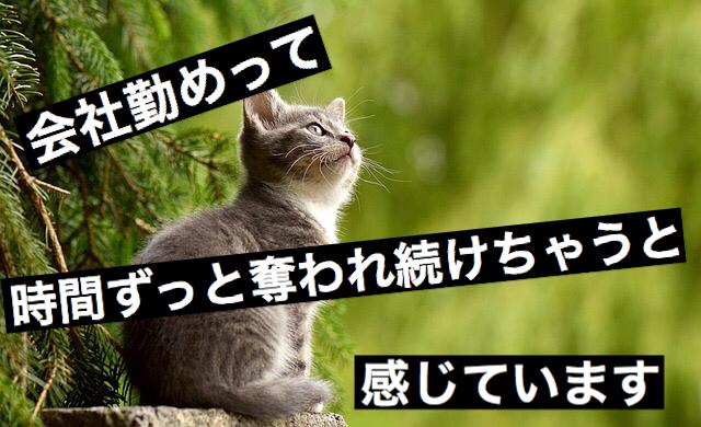 f:id:imaikiaruku:20171021062652j:plain