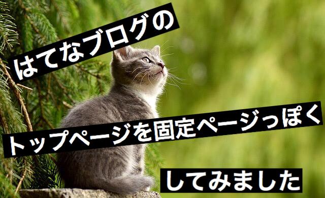 f:id:imaikiaruku:20171021153020j:plain