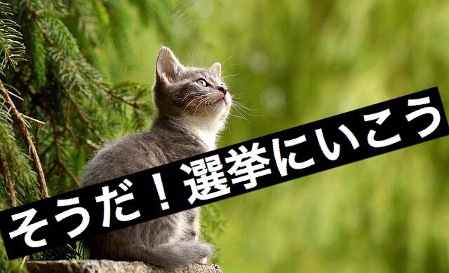 f:id:imaikiaruku:20171021213056j:plain
