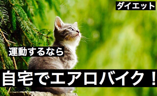 f:id:imaikiaruku:20180117101612j:plain