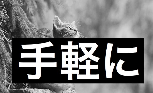 f:id:imaikiaruku:20180117111311j:plain