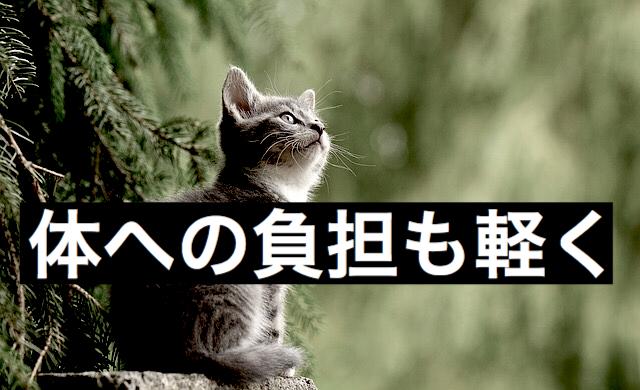 f:id:imaikiaruku:20180117111341j:plain