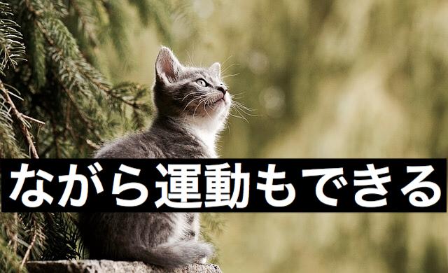 f:id:imaikiaruku:20180117111410j:plain