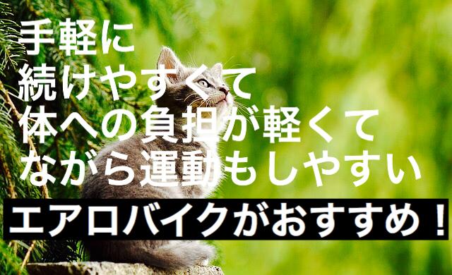 f:id:imaikiaruku:20180117111422j:plain