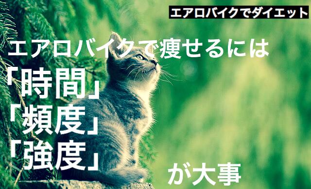f:id:imaikiaruku:20180117202115j:plain