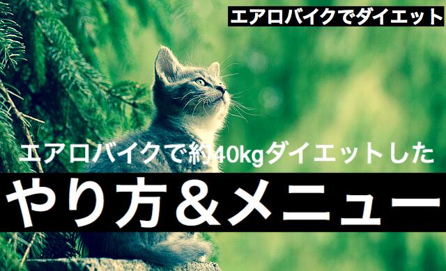 f:id:imaikiaruku:20180119200841j:plain