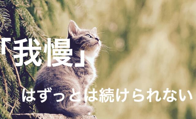f:id:imaikiaruku:20180126193020j:plain