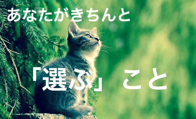 f:id:imaikiaruku:20180126193033j:plain
