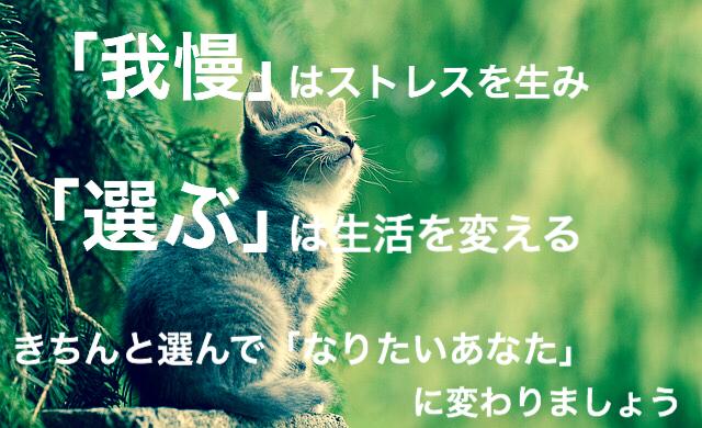 f:id:imaikiaruku:20180126193042j:plain