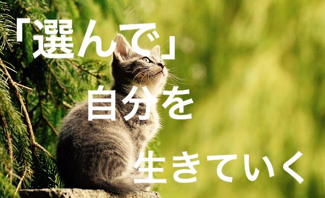 f:id:imaikiaruku:20180131192848j:plain