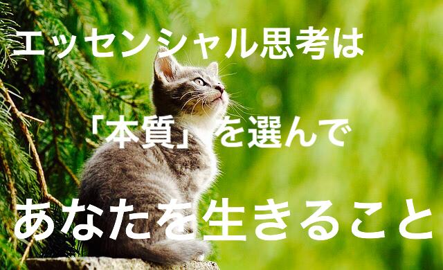 f:id:imaikiaruku:20180131192857j:plain
