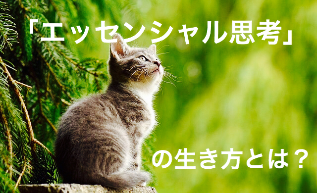 f:id:imaikiaruku:20180131200355j:plain
