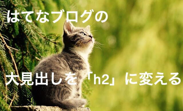 f:id:imaikiaruku:20180204173144j:plain
