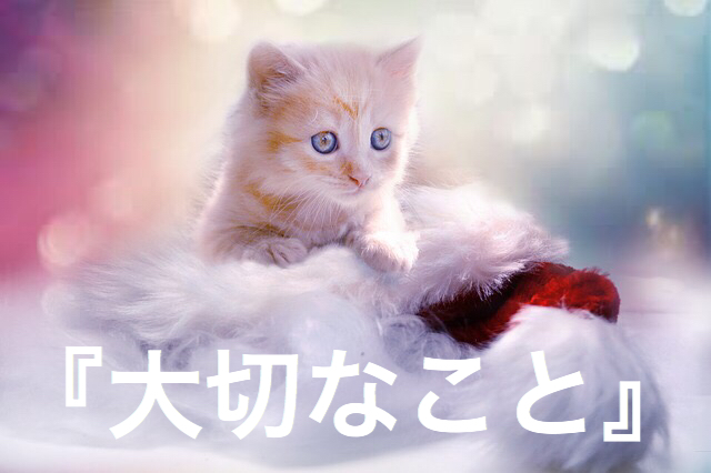 f:id:imaikiaruku:20180222193037j:plain