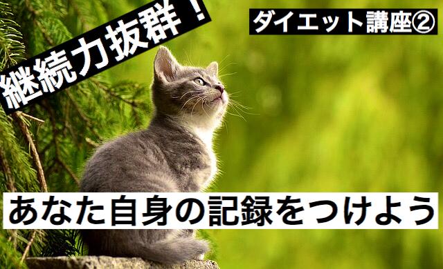 f:id:imaikiaruku:20180224110657j:plain