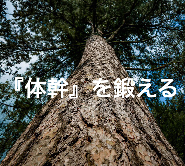 f:id:imaikiaruku:20180311190317j:plain