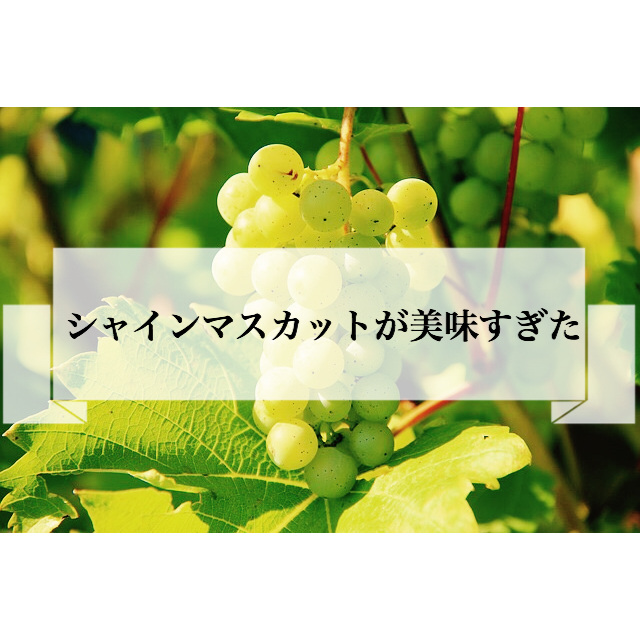 f:id:imaikiaruku:20180902114002j:plain
