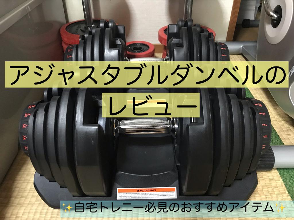 f:id:imaikiaruku:20190220162232j:plain