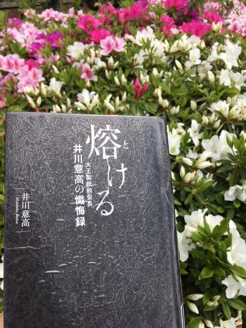 f:id:imakokowoikiru:20170502145109j:plain