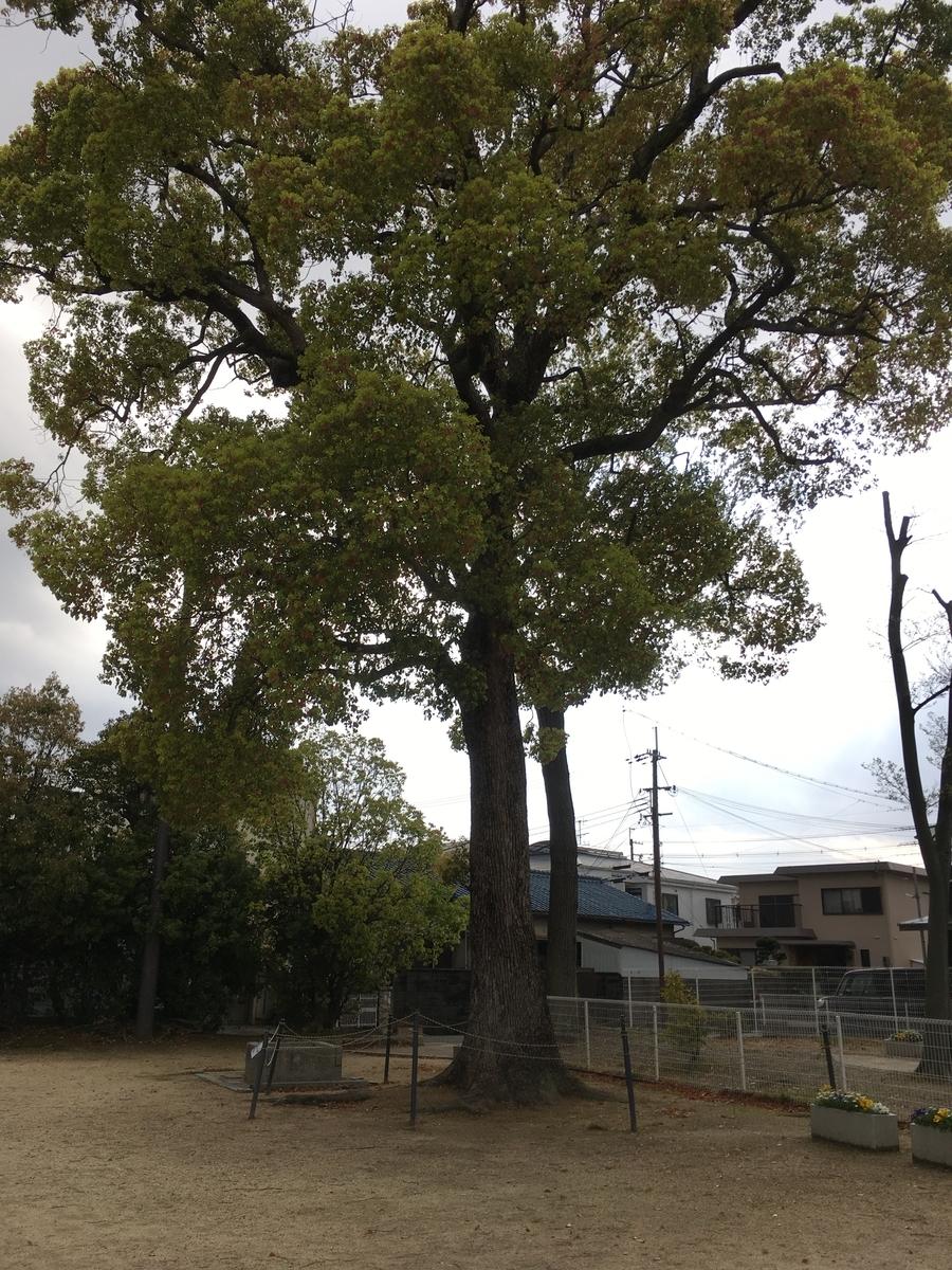 杉ケ本神社