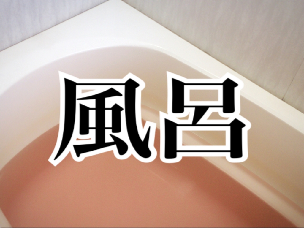 f:id:imamuuu:20161202101737j:plain