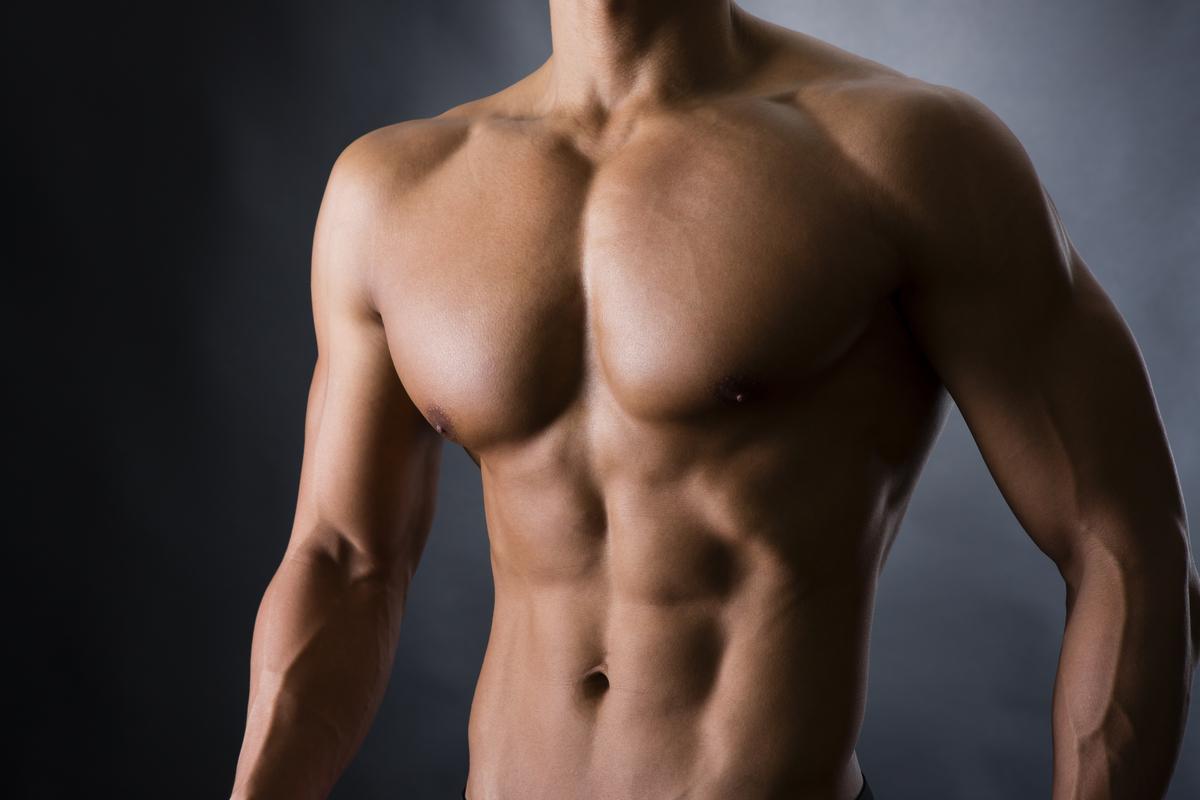 筋肉は美しい