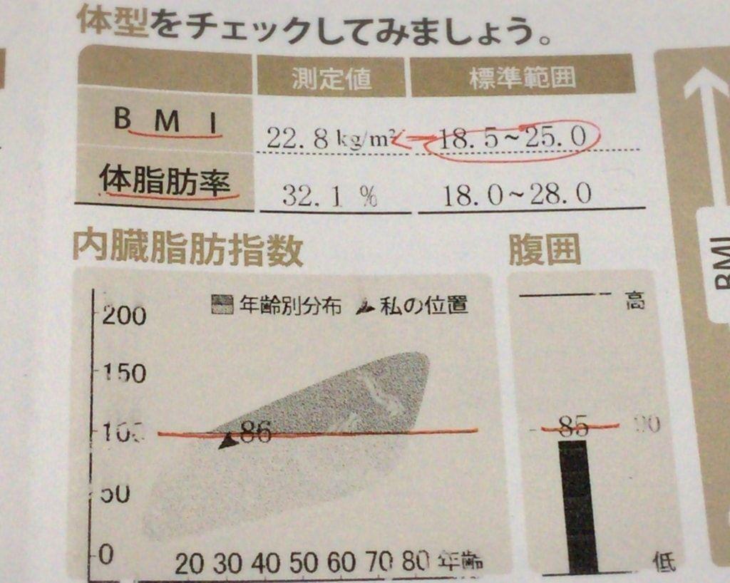 インボディで見るBMI、体脂肪率