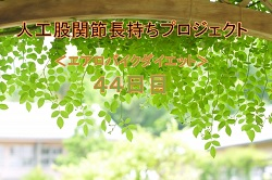 f:id:imanaraimakara:20190418073328j:plain