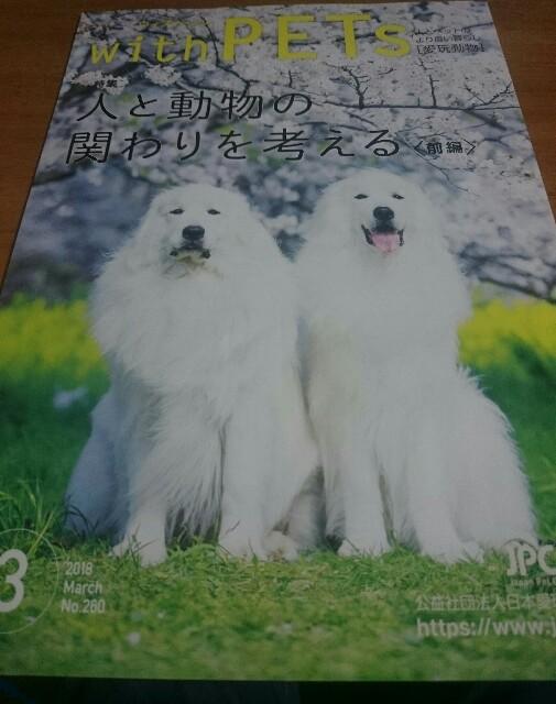 年に数回送られてくる薄い雑誌