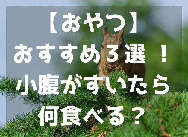 f:id:imaterasu:20200926145044j:plain