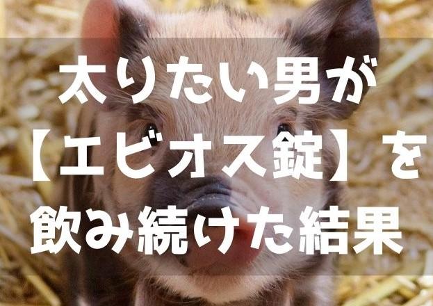 f:id:imaterasu:20201025094900j:plain