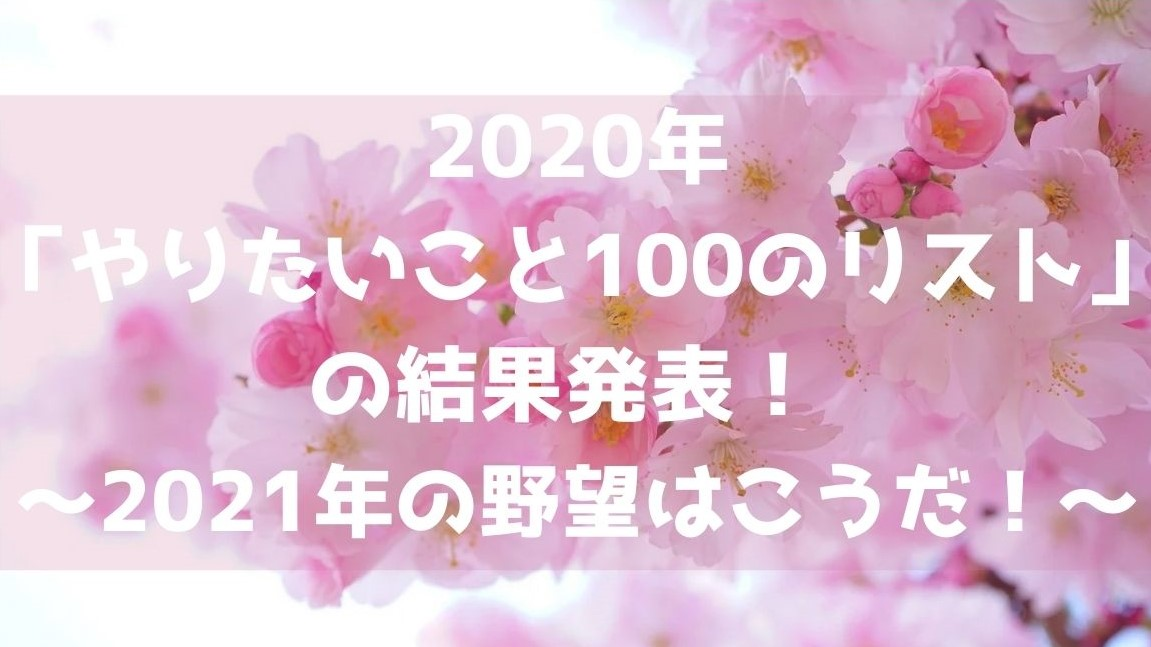 f:id:imaterasu:20201226190351j:plain