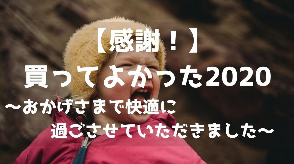 f:id:imaterasu:20201227133638j:plain