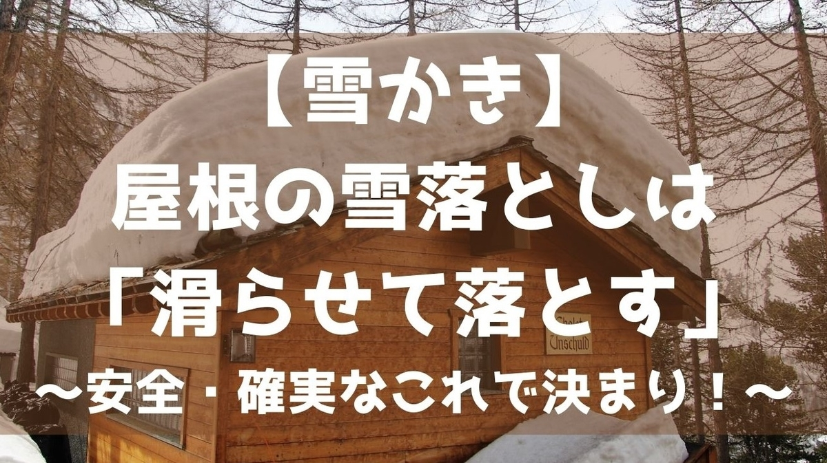 f:id:imaterasu:20201229112605j:plain