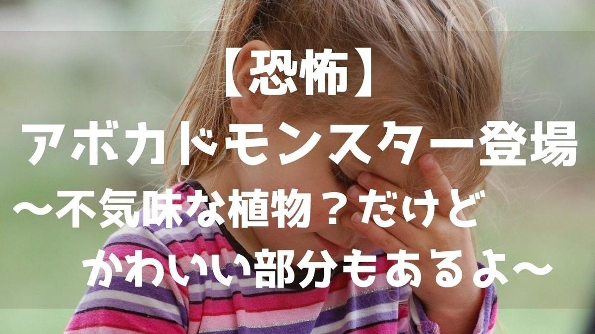 f:id:imaterasu:20201231142044j:plain