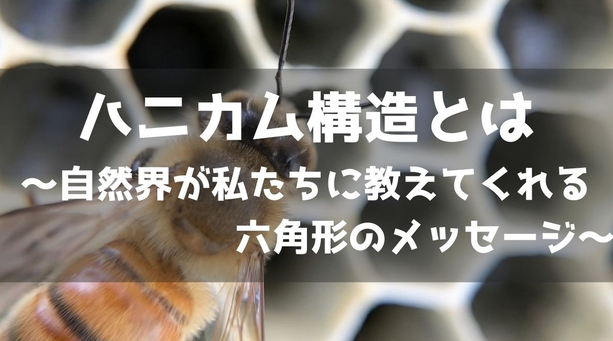 f:id:imaterasu:20210101134645j:plain