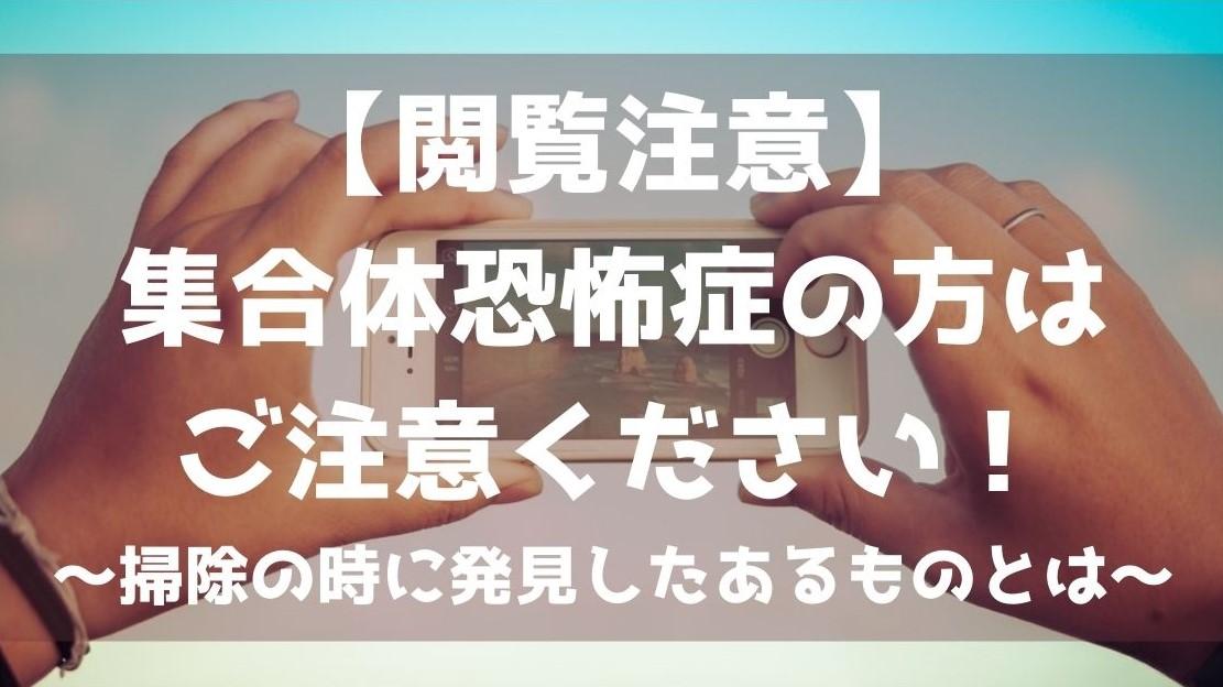 f:id:imaterasu:20210110102704j:plain