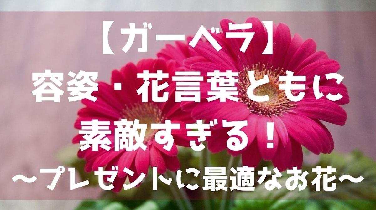 f:id:imaterasu:20210116104229j:plain