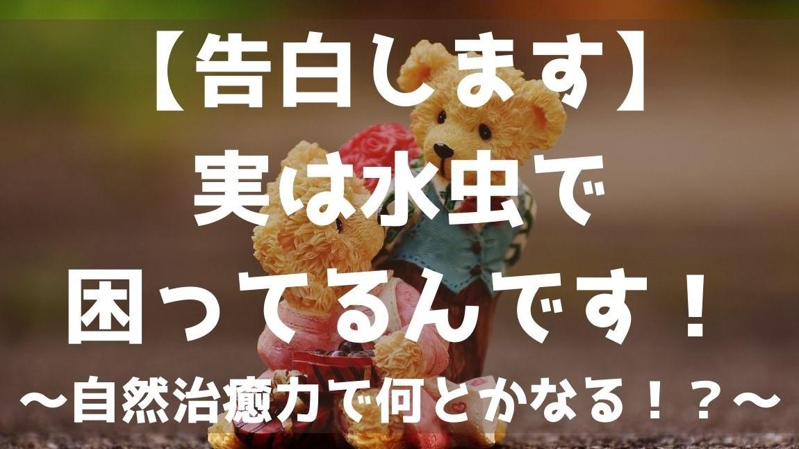 f:id:imaterasu:20210223113116j:plain