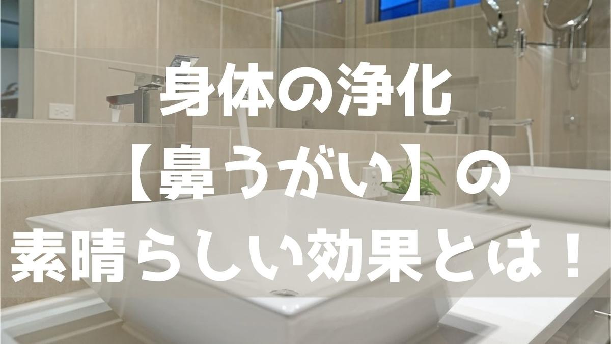 f:id:imaterasu:20210321151859j:plain