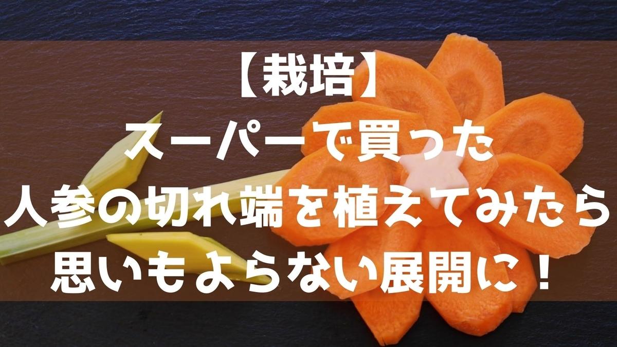 f:id:imaterasu:20210710213235j:plain