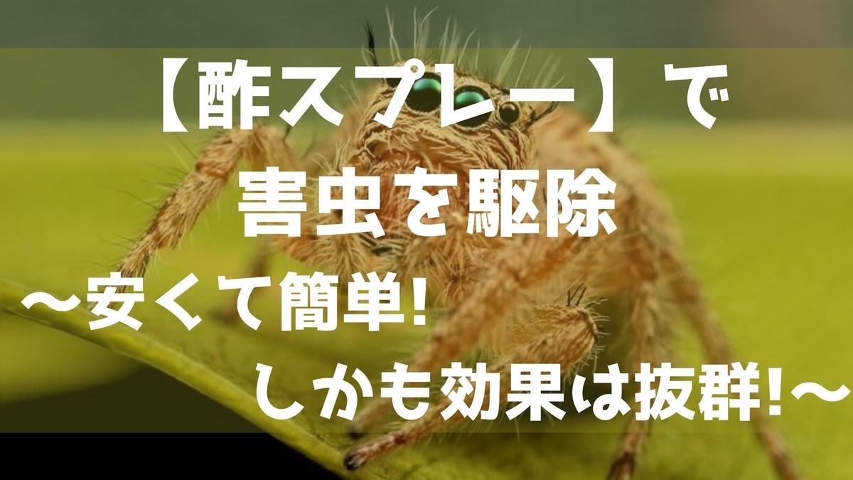 f:id:imaterasu:20210722164452j:plain