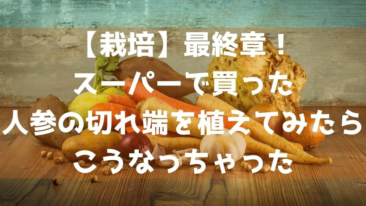 f:id:imaterasu:20210814104214j:plain
